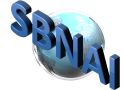 Small Business Network Administrators International